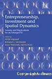 Entrepreneurship, investment and spatial dynamics